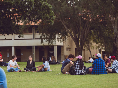 UWA joins forces with Harvard Business School